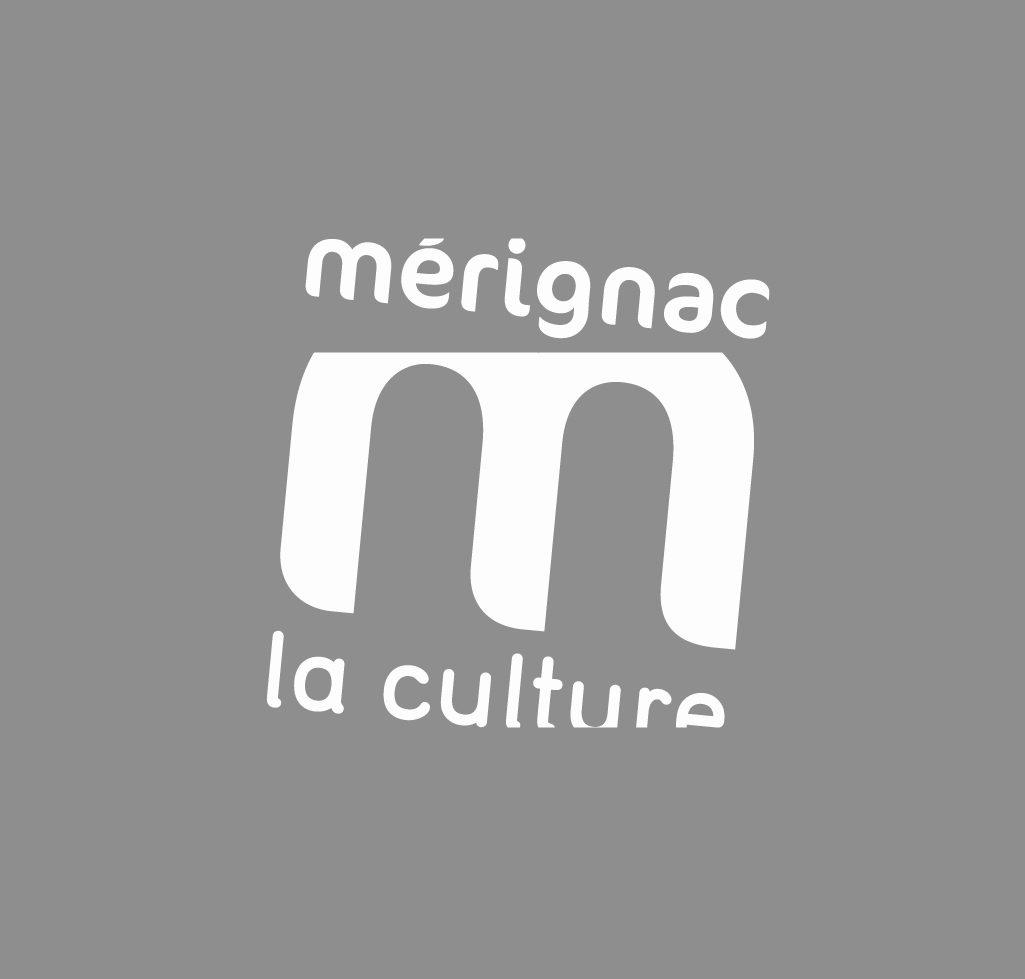 desmondespossibles.merignac-photo.com